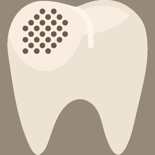 premolar-1